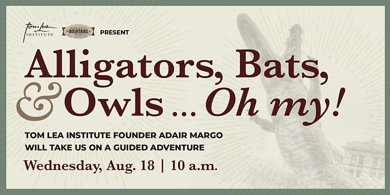 Alligators, Bats, & Owls... Oh My!